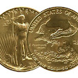 Gold American Eagle aus den USA