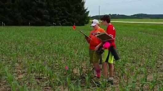 treinen farm corn maze and pumpkin patch google