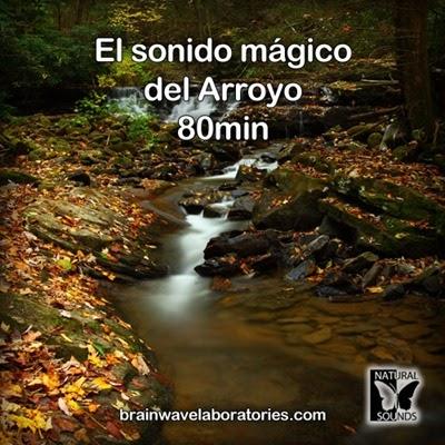 El sonido mágico del Arroyo - 80min