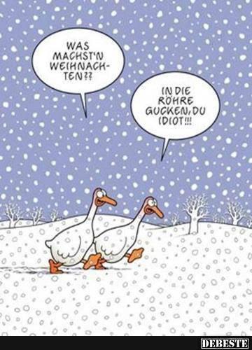 Prima Spruche Zu Weihnachten Lustig Blog Beispiel