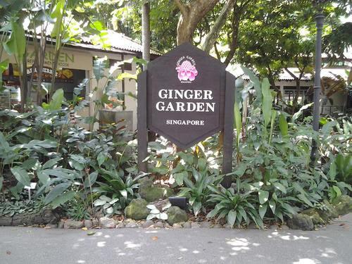 Пред Ginger Garden