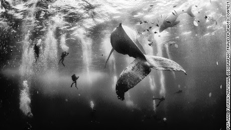 2015 National Geographic Traveler Photo Contest winners - CNN.com