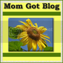 Mom Got Blog