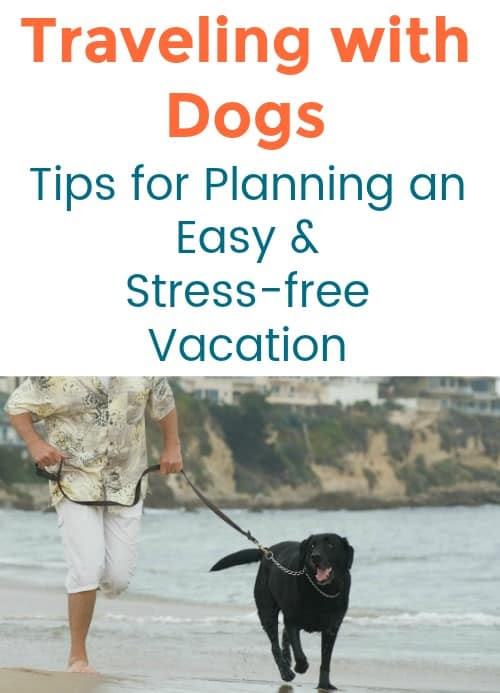 Traveling with Dogs: Tips for Planning an Easy and Stress-free Vacation