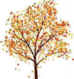 autumn_9_2012_2