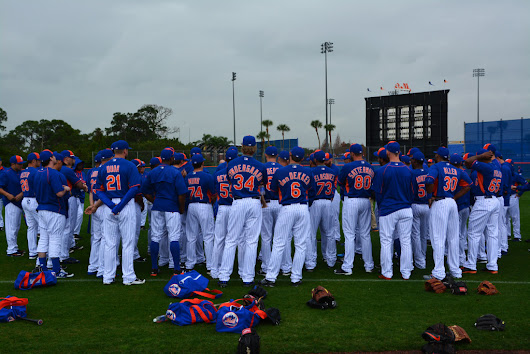 NY Mets Spring Training: Day 1 - AN OBSESSIVE NEUROTIC GARDENER