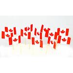Canada | Canadian Flag Toothpicks (100)