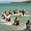 Celebrity Cruise Excursions - Jamaica Taxi Tours and Airport Transfers