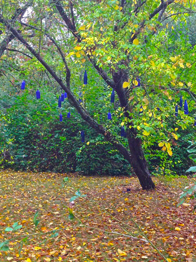 Visiting-the-Blue-Spirit-Bottle-Tree-at-the-Lucky-Mojo-Curio-Company