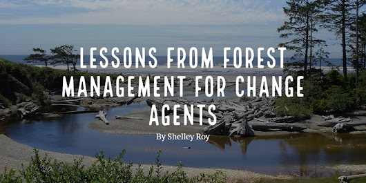 Lessons From Forest Management for Change Agents