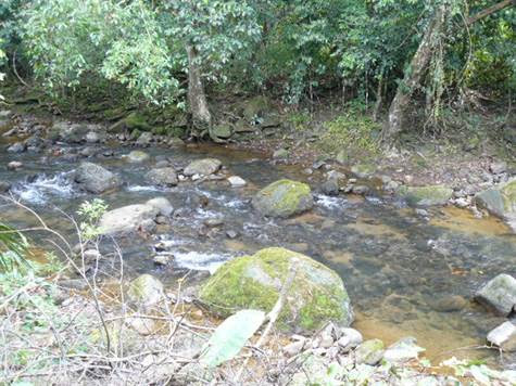 Land for Sale Costa Rica | Dominical Real Estate