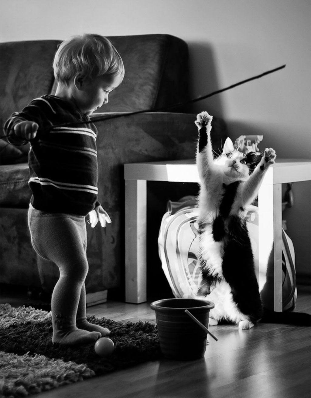 20 crianças brincando com seus gatos que alegrarão o seu dia 12