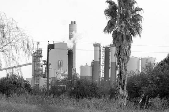 Planta de UPM. Foto: Javier Calvelo (archivo, julio de 2011)