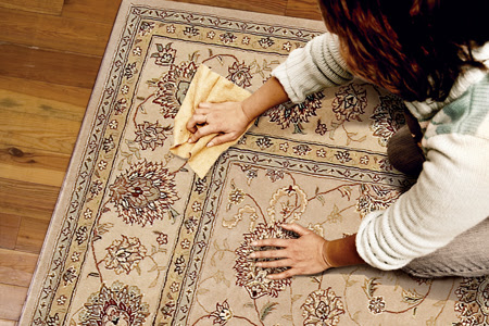 How to Remove Every Type of Carpet Stain