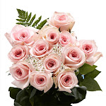 Flowers - One Dozen Pink Roses by GlobalRose