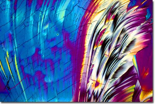 artisctic-image-micro.magnet