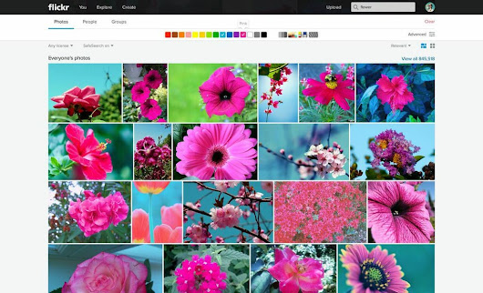 Flickr's New Magical Search Tool Knows What's in Your Pics | WIRED