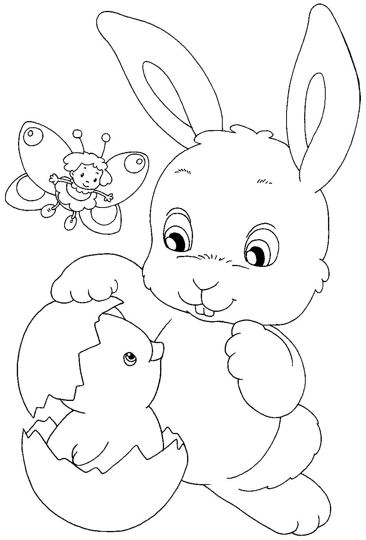 Disegni Da Colorare Coniglietto Stampae Colorare