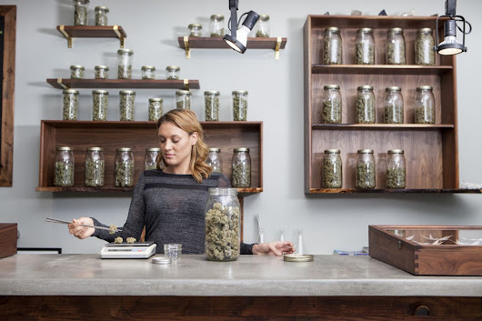 How Mainstream Is Marijuana? Cannabis Franchises Are Available in Colorado