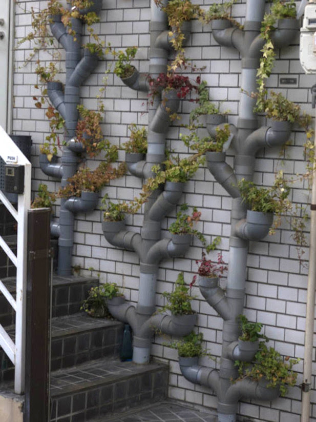 vertical garden made with pvc pipes