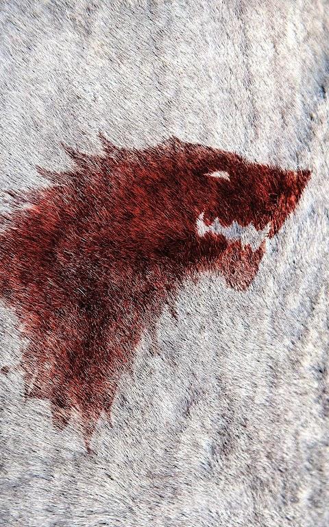 خلفية ذئب كيم اوف  ثرونز بدقة عالية