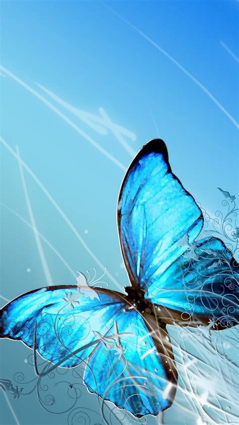 blue butterfly wallpaper iphone   iphone wallpaper