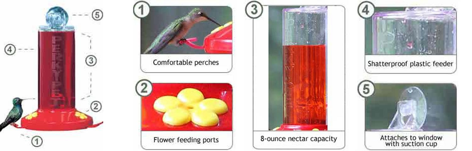 Amazon.com : Perky-Pet 8 oz Window Mount Hummingbird Feeder 217 ...