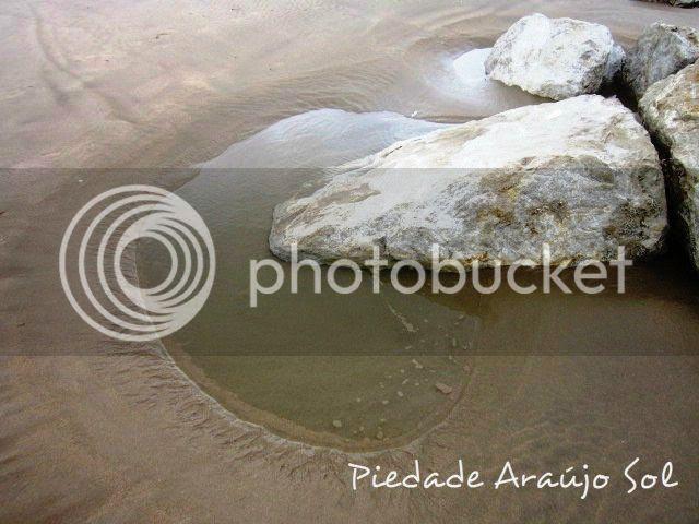 PiedadeArauacutejoSol097_zpsd3fb8979 photo PiedadeArauacutejoSol097_zpsd3fb8979-1_zps363d6676.jpg
