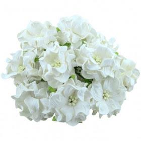http://scrapkowo.pl/shop,kwiaty-gardenii-5szt-biale,4097.html