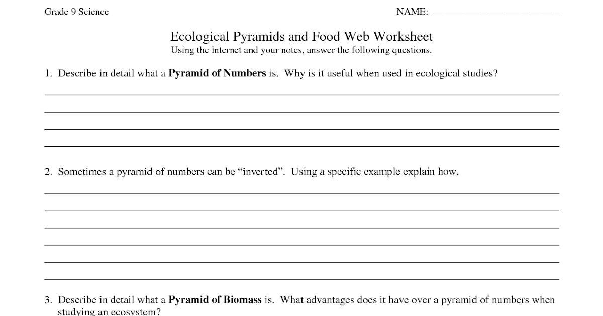 31 Ecology Worksheet Answer Key - Worksheet Resource Plans