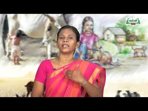 கவிதைப் பேழை Std 8 Tamil ஒன்றேகுலம் Kalvi TV
