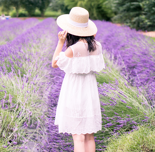 Cold Shoulder Dress and Lavender Fields | Just a Tina Bit