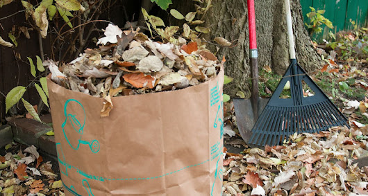 Free Residential Yard Waste Pickup Offered in Clifton Park