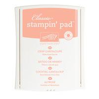 Crisp Cantaloupe Classic Stampin' Pad