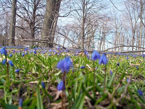 4.4.2009 Evanston (36)