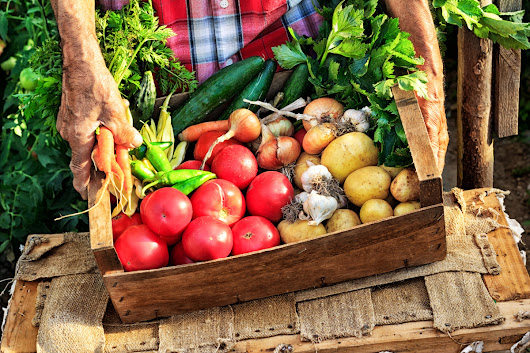 Global Organic Food and Beverage Market to Nearly Triple by 2022