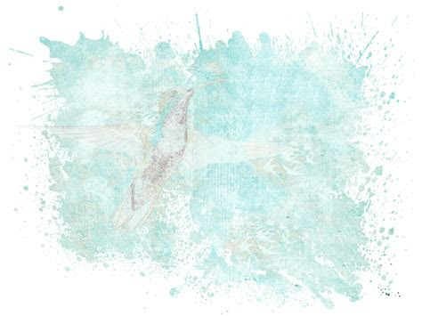 gambar gratis transparan abstrak komputer seni burung