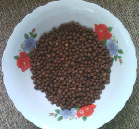 Jamaican Allspice - The Secret To Delectable Jamaican Food