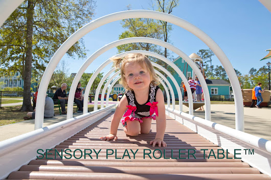 Sensory Play Roller Table™ - Carolina Parks and Play