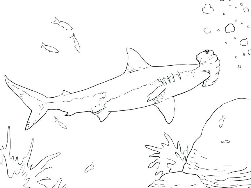 Goblin Shark Coloring Pages at GetColorings.com | Free ...