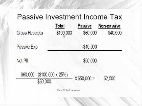 Excess Passive Income Tax (REG 2:02)