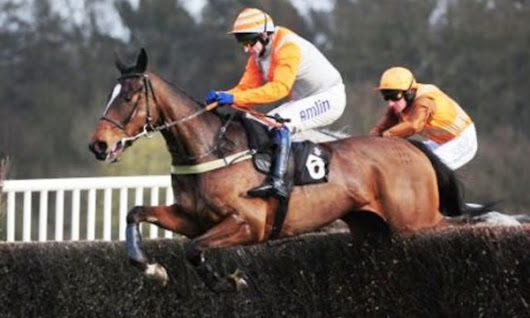Plumpton Racing Tips 03/01/2016 - MyBettingBonus.co.uk