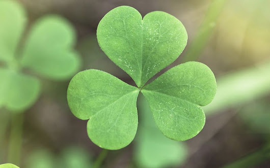 Facts you never knew about St. Patrick's Day | IrishCentral.com