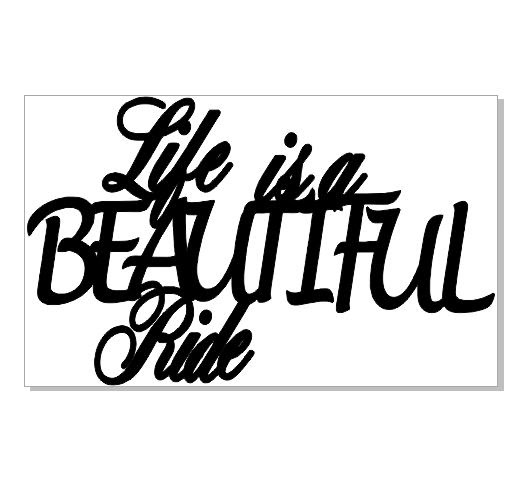 life is a beautiful ride  128 x 75  min buy 3