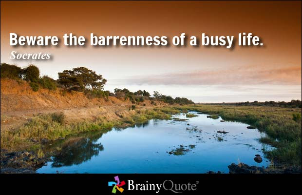 Socrates Barren Busy Credit Brainy Quote My New Old Self