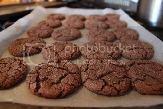 You Only Get One - Mexican Hot Chocolate Snickerdoodles