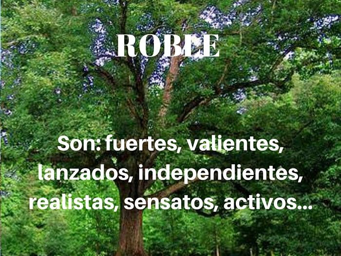 árbol De Cumpleaños El Roble