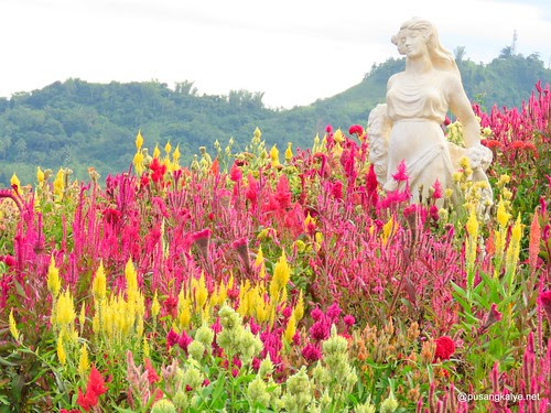The 500-peso Habal Habal Tour of Temple of Leah and Sirao Flower Farm #Cebu #Philippines