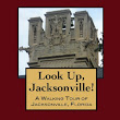 Day 14 - Book Review - Look Up, America! Series From Walk The Town