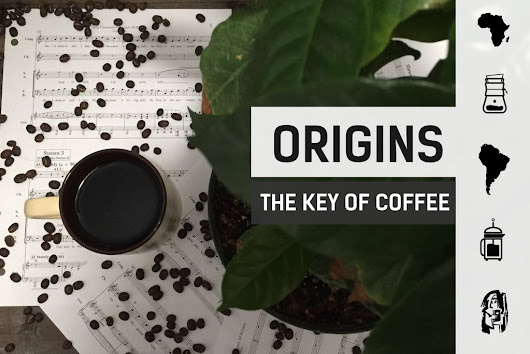 Origins: The Key of Coffee